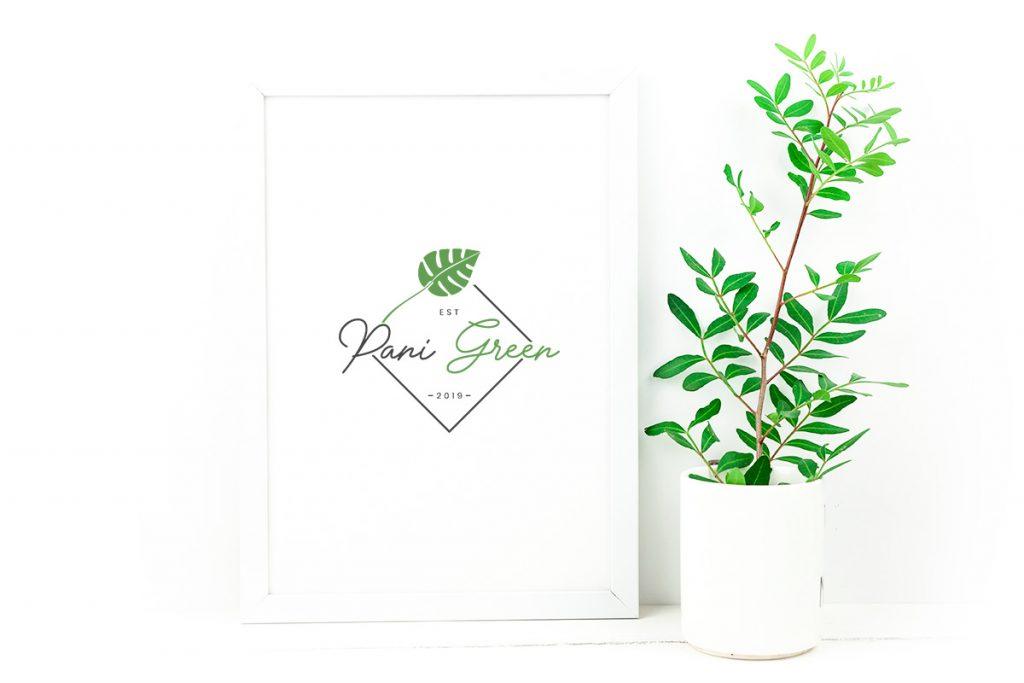 Pani Green, poznaj nas - Zieleń do biura i firmy